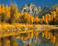 """Пейзаж. """"Осень. Зеркальное озеро"""", размер 40х50 - ДЕКАРТ - настоящая багетная мастерская на Московской!"""