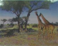 """Животные. """"Два жирафа под деревом"""", размер 20х25 - ДЕКАРТ - настоящая багетная мастерская на Московской!"""